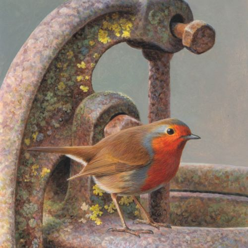 Andrew Hutchinson International wildlife illustrator. UK