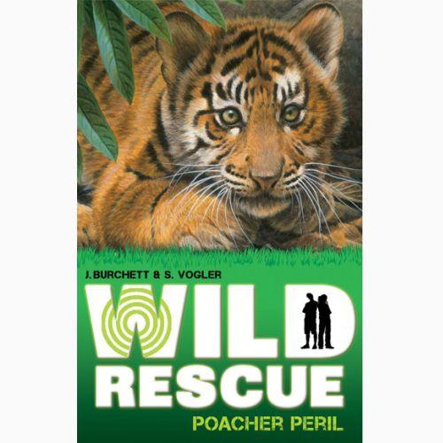 Tiger Cub Illustration, Wildlife Images © Andrew Hutchinson