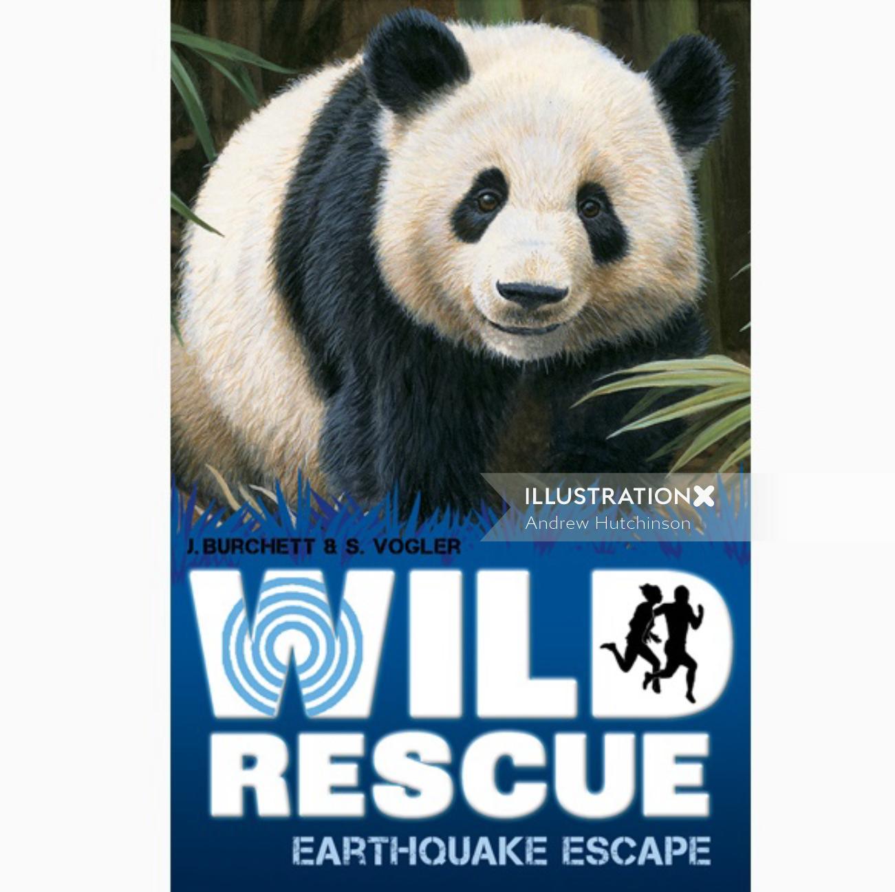 Panda Cub Illustration, Wildlife Images © Andrew Hutchinson