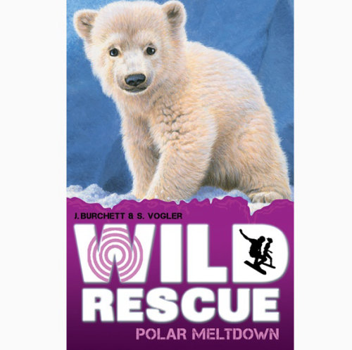 Polar Bear Cub Illustration, Wildlife Images © Andrew Hutchinson
