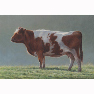 Illustration of Britain cow