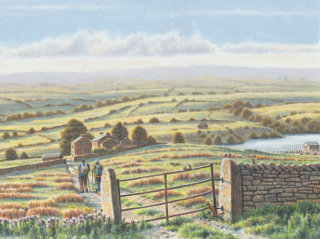 Landscape of Yorkshire tea farms