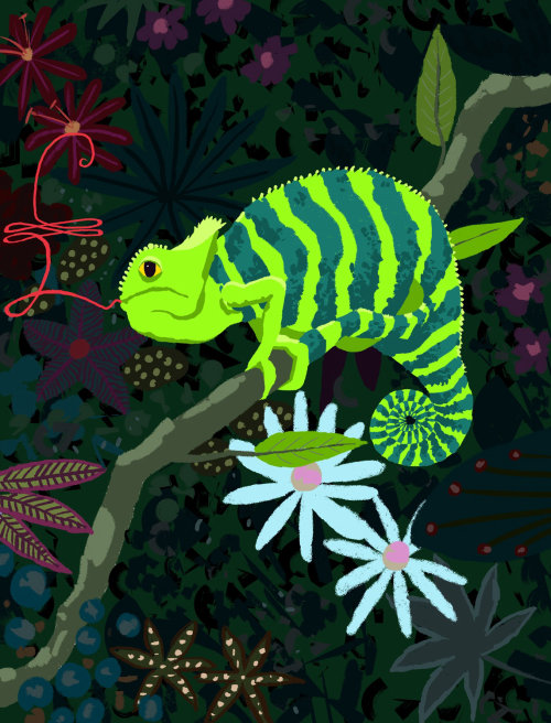 Animation of chameleon