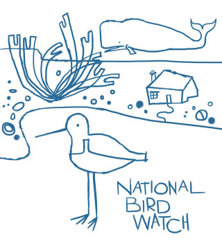 Illustration for national bird watch concept by Andrew Selby