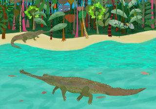 """Illustration Long Nosed Crocodile """