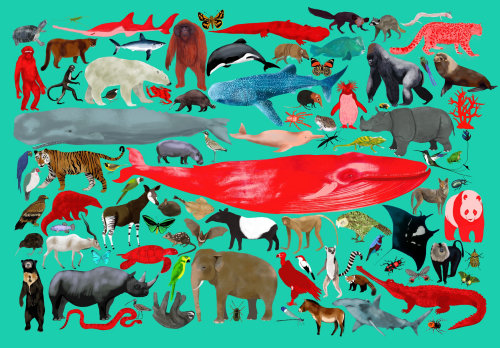 Endangered animals illustration