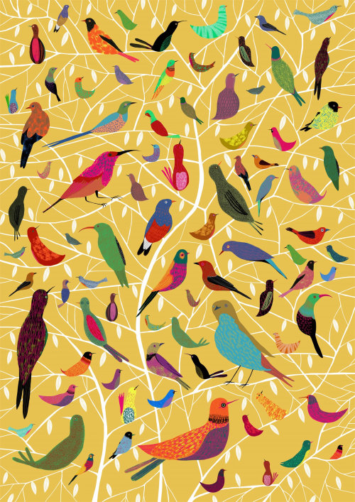 illustration of Bright coloured birds