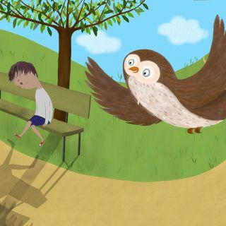 boy, owl, sadness