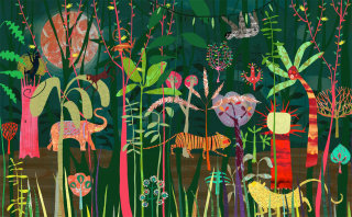 Jungle illustration by Anne Wilson