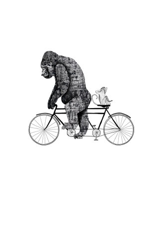 Gorilla on bicycle illustration by Anne Wilson
