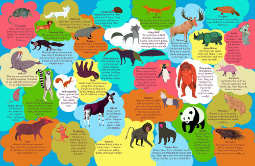 An illustration of animals species nature