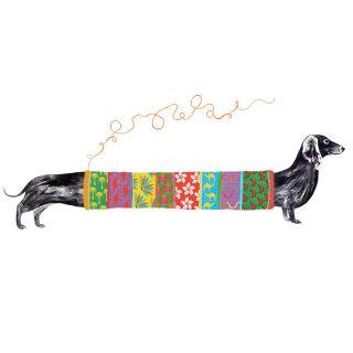 sausage dog, jumper, Christmas