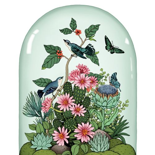 Botanical Dome illustration