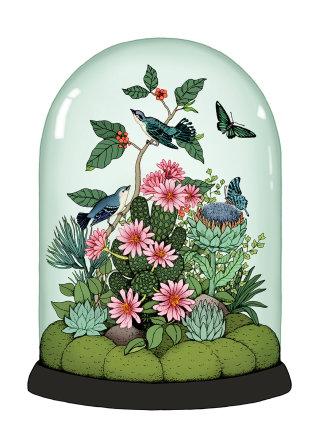 Botanical Dome illustration