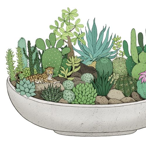 Cactus plants in pot artwork