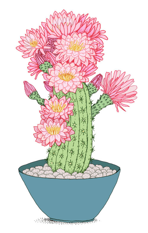 Arbre de cactus en conception graphique en pot