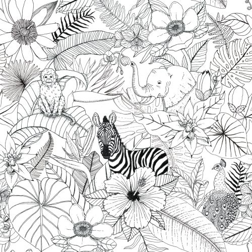 Annie Davidson international naive linework illustrator. Melbourne