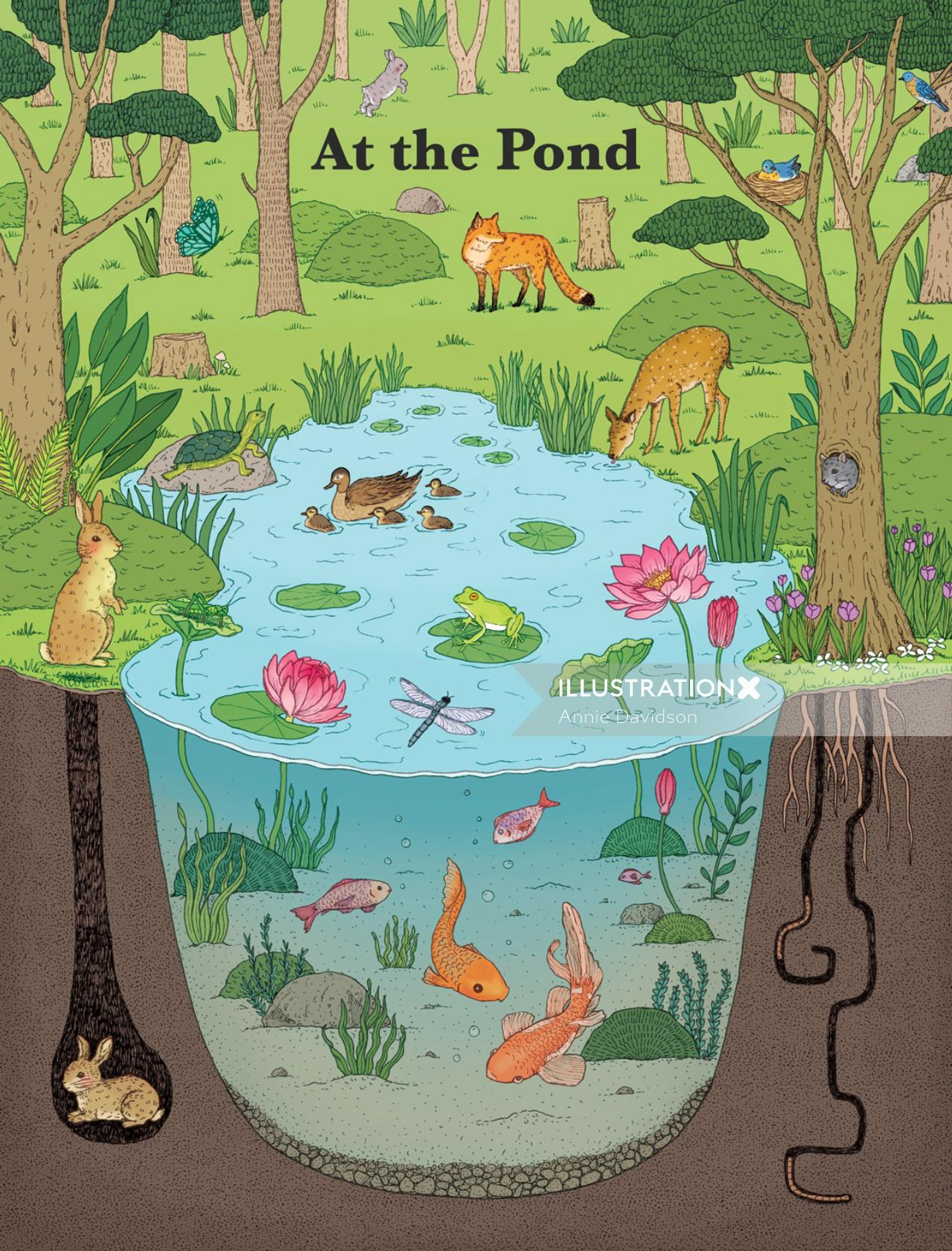 Animals Poster for Scholastic Book