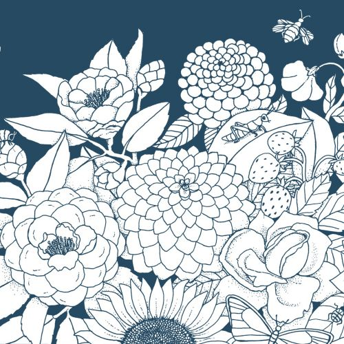 Line illustration floral page colouring book