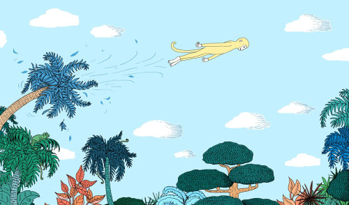 monkey, illustration, medibank