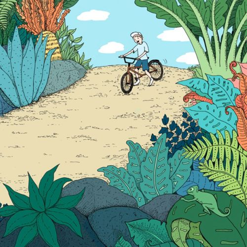 dinosaurs, illustration, medibank, boy, bike