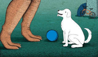dinosaurs, illustration, medibank, dog, ball, soccer, football, park, bike
