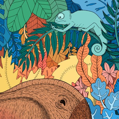 dinosaurs, illustration, medibank, chameleon, jungle