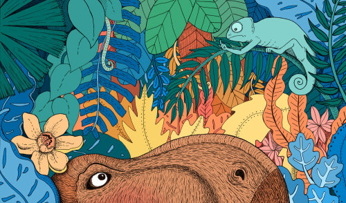 dinosaures, illustration, medibank, caméléon, jungle