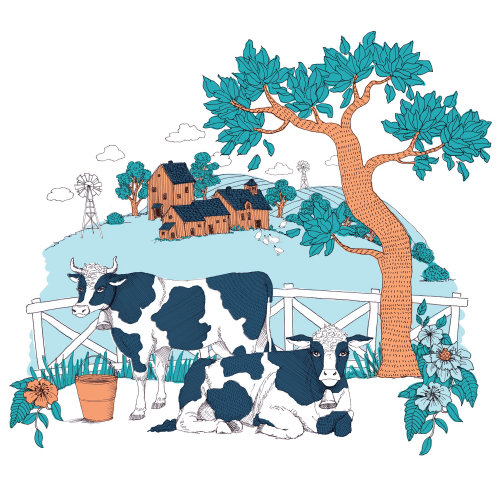 Cows farm house illustration