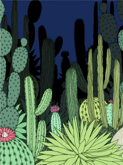 Graphical design of cacti garden in night