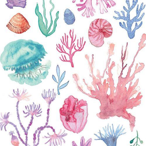 Watercolour of underwater nature