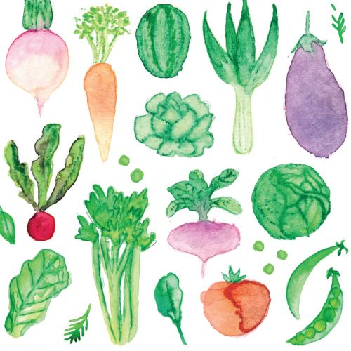 Veggie watercolour painting