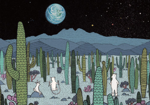Hedgehog cactus animation by Annie Davidson