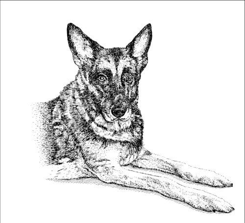 Arte de retrato de cachorro