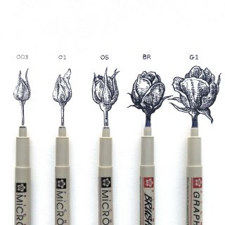 Pens with the life stages of a rose from bud to blossom