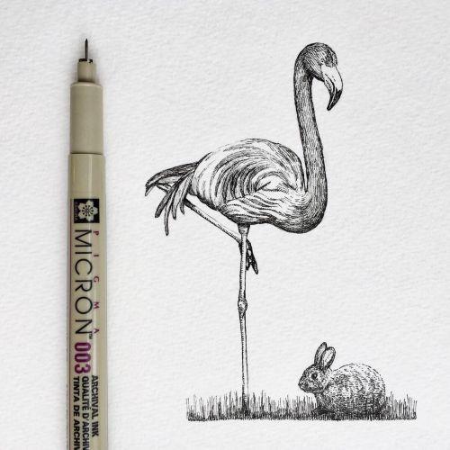 Great egret bird pencil artwork