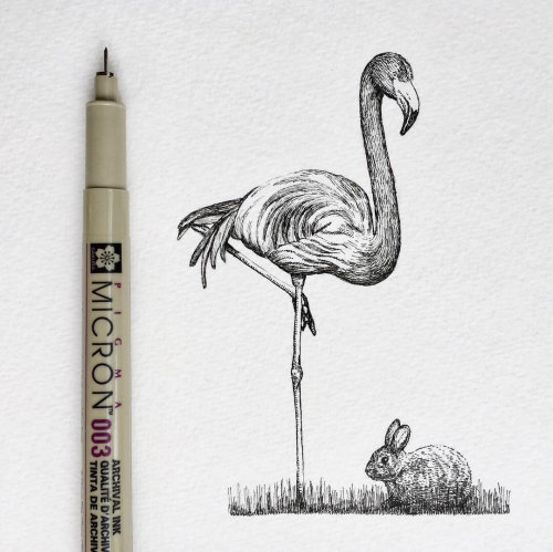 Arte de lápis de pássaro de garça-branca-grande