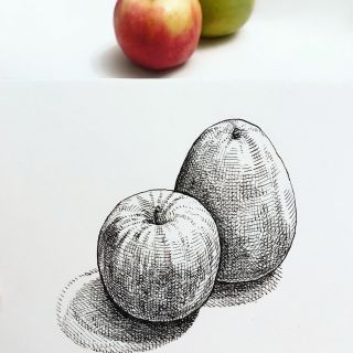 Line art of fruits