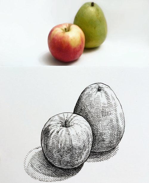 水果线条艺术