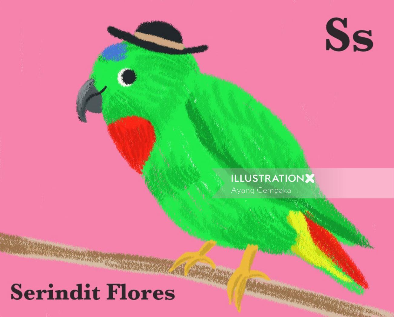Children green parrot