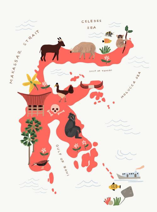 Makassar strait map illustration by Ayang Cempaka