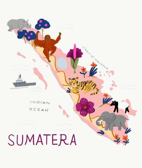 Design do mapa de Sumatera