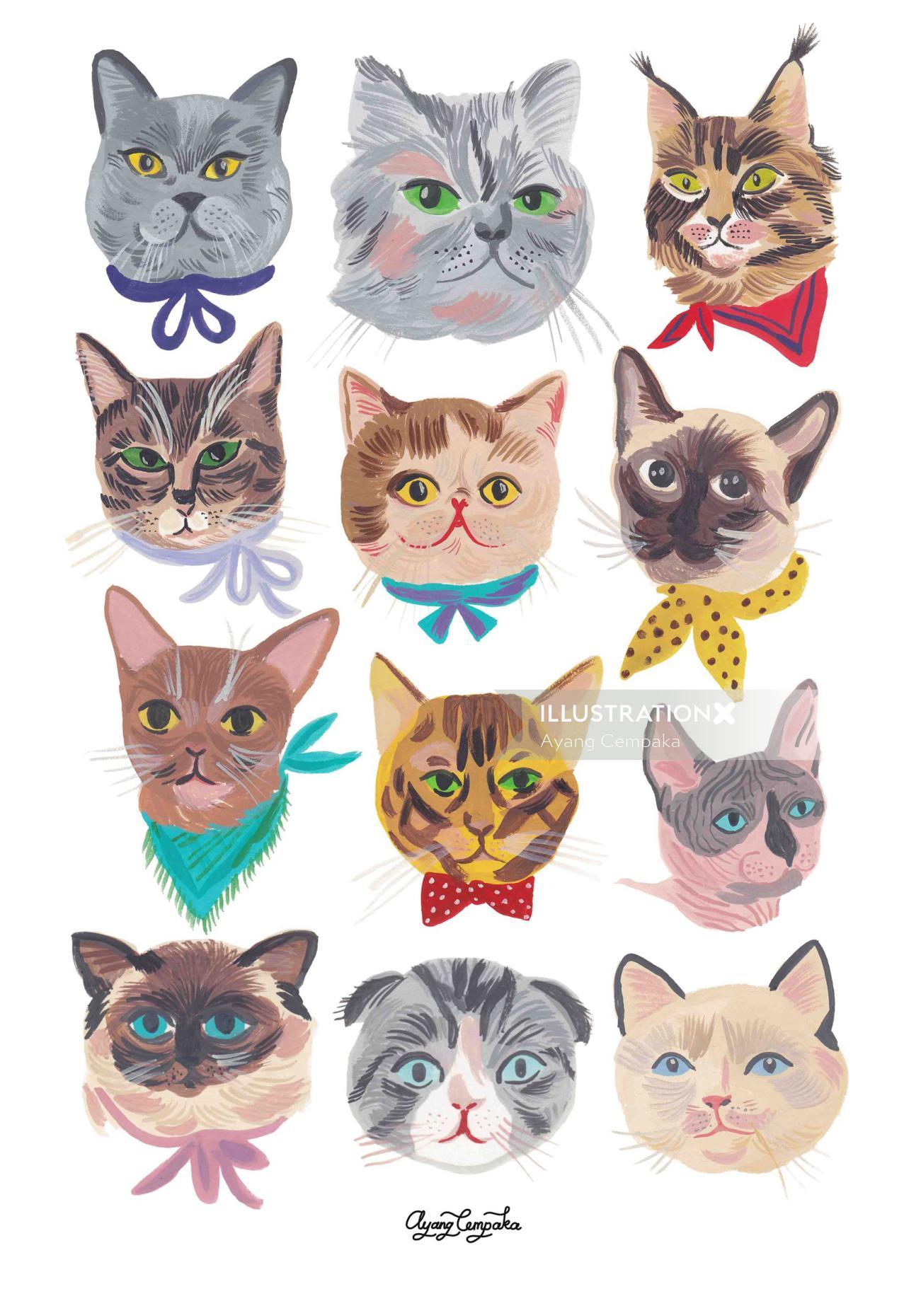 Animal different cat faces