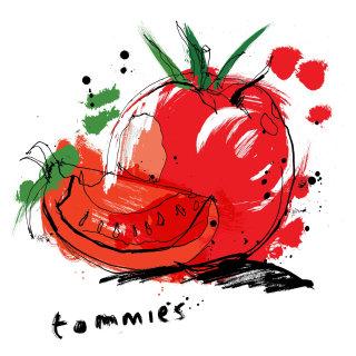 Tomato watercolor illustration