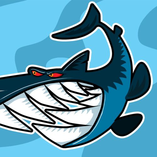 Animals smiling whale