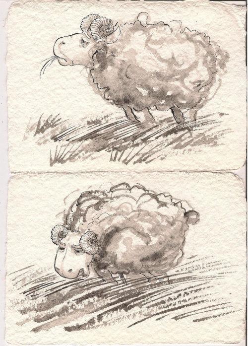 Cartoon sheep eating grass