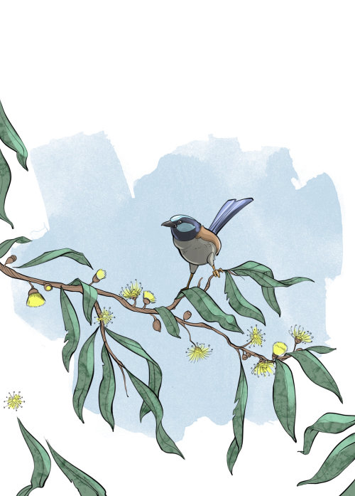 Bird on tree branch illustration
