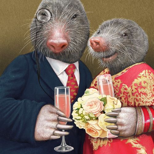 Mouse couple portrait illustration