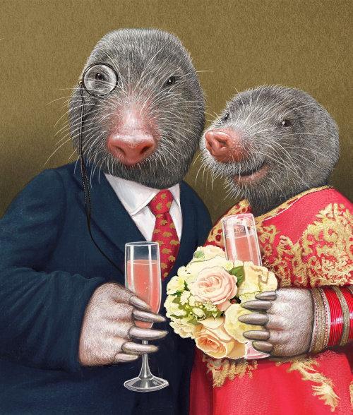 Ilustração de retrato de casal de mouse