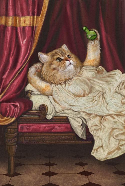 Animal sleeping Cat illustration